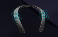 Bluetooth Neckband Speakers